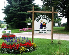 bupperts farm eldersburg md